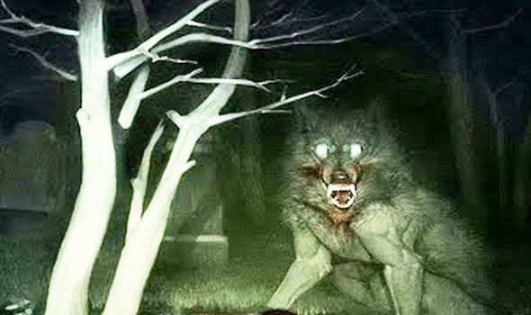 Werewolves fate was sealed in the witch hunts